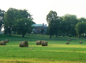 01 Cole Hill Farm