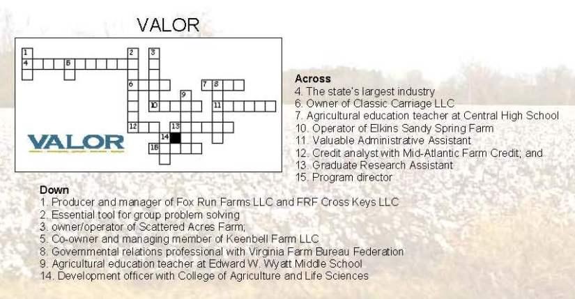 VALOR puzzle