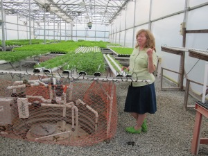 Mary Ellen shows off her lettuce in the green house and her micro greens in the warehouse.