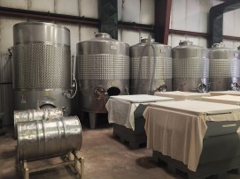 Ingleside Vineyard #4