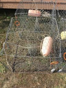 A Crab Trap